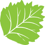 Large leaf image representing Cottonwood Veterinary Clinic